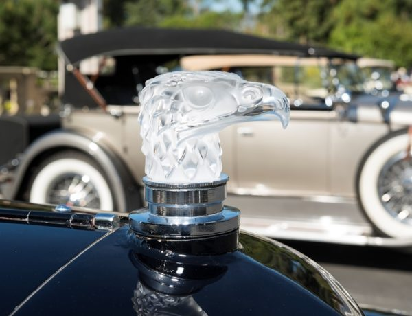 BH_Concours_Sun_362 resized